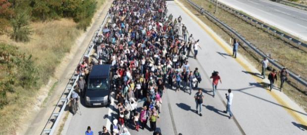 ONZ gani Szwecję za kontrole graniczne