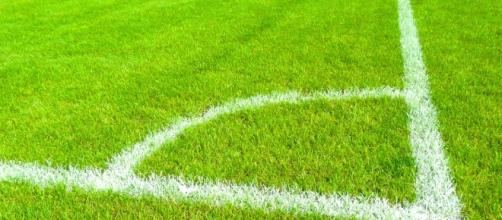 Pronostici Sampdoria-Torino e Verona-Atalanta
