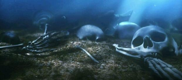 Fotografía de Cráneos en el fondo del mar