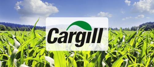 Cargill tem quase 1000 vagas abertas