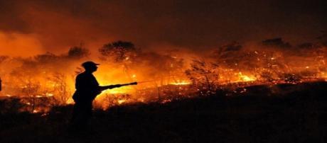 Bombeiro tenta controlar as chamas