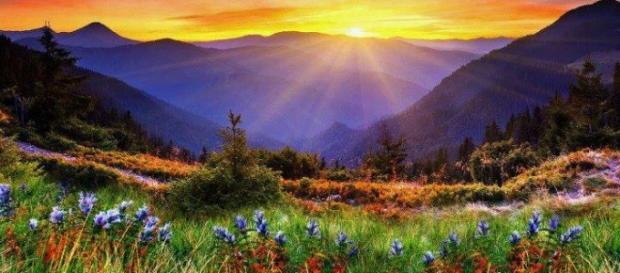 Paraíso descrito pelo médico Alexander Eben