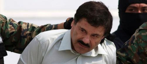 """""""El Chapo"""" Guzmán ha sido recapturado"""
