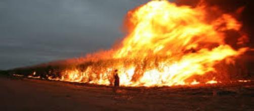 Immagine incendio boschivo in Australia.