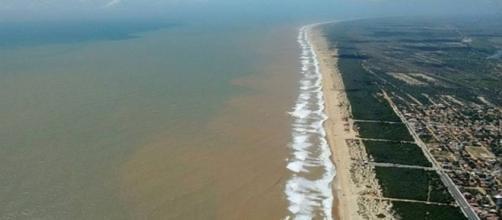 A lama chega a praia do Ipiranga
