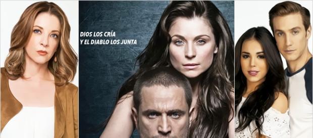 Ludwika Paleta voltará às novelas.