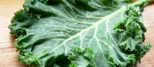 Apesar das carnes conterem mais proteínas, ainda sim os alimentos de origem vegetal também são ótimas fontes.