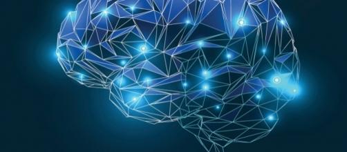 La sclerosi multipla può colpire varie aree del sistema nervoso centrale