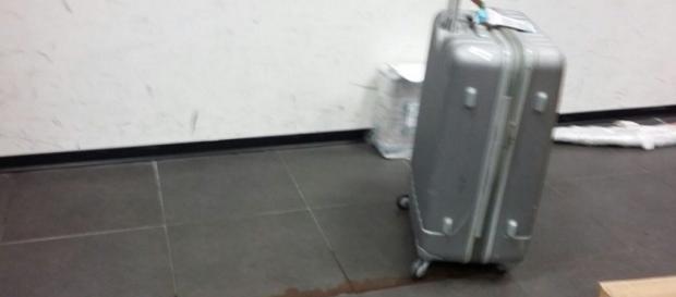 Una valigia che perde liquido sanguinoso sbarcata alla Malpensa - Foto da Il Fatto Quotidiano