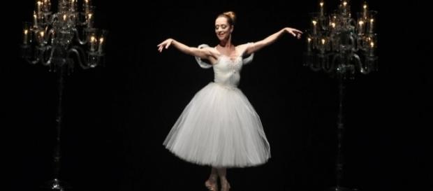 Netdança - Universo da dança em um click! - com.br