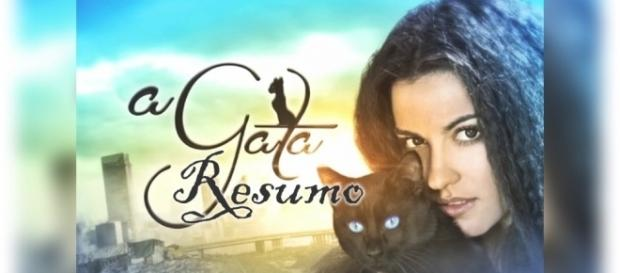 Saiba tudo sobre os próximos capítulos da novela 'A Gata'