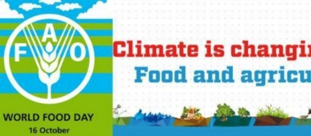 #WorldFoodDay: ''Il clima sta cambiando; il cibo anche.'' #BlastingNews