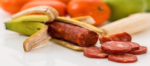 Pàmies advierte del riesgo de los alimentos transgénicos