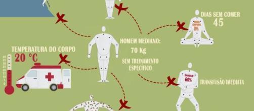 O corpo humano e os seus limites
