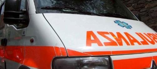 Orrore a Pescara, morto bimbo di 19 mesi azzannato da un cane - ilponente.com
