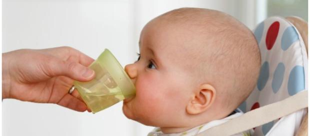 Os perigos de dar água para o bebê