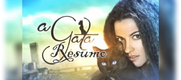 Confira o resumo da novela 'A Gata' para os próximos capítulos
