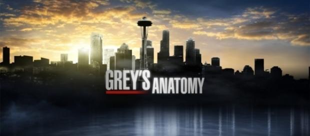 Grey's Anatomy' season 12, episode 6 preview: Meredith versus ... - cartermatt.com
