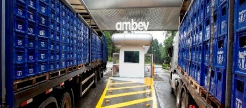 Ambev tem 966 vagas de emprego em todo o Brasil