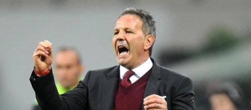 Udinese-Torino,probabili formazioni: Mihajlovic perde pezzi in attacco.