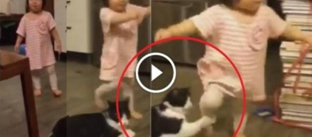 Bebê é derrubado pelo próprio gatinho