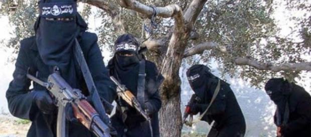 Luigi Pelazza indaga sulle armi dell'Isis