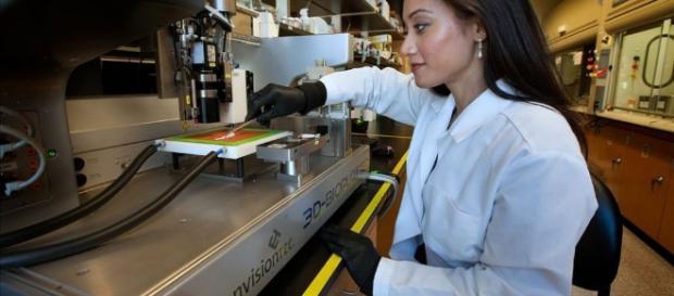Hueso sintético por impresión 3D regenerador de lesiones óseas ... - imprimalia3d.com