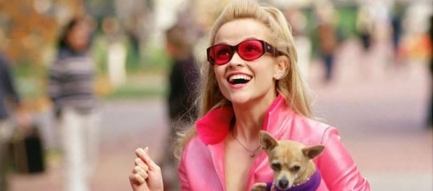 "The Definitive Ranking Of Elle Woods' 16 Best Outfits In ""Legally ... - dailybreak.com"