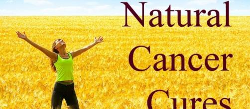 10 Best Natural Cancer Cures That Have Saved Thousands of Lives ... - thebigriddle.com