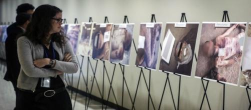 Maxxi, la mostra sui detenuti torturati in Siria