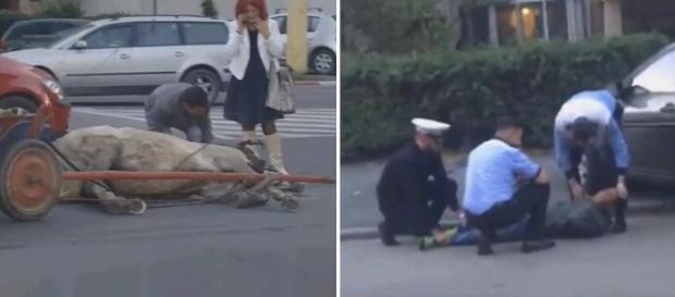 Căruţaş BĂTUT de poliţişti după ce aproape ŞI-A OMORÂT calul în bătaie