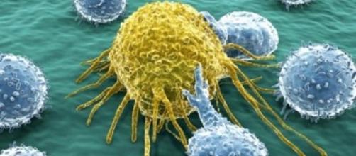 Grossi passi avanti con l'immunoterapia contro i tumori.