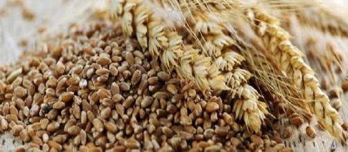 I cereali integrali hanno un effetto benefico sul cuore