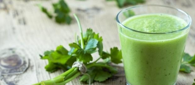 Zielony chlorofil potrzebny tylko roślinom? | miscatalina - miscatalina.pl