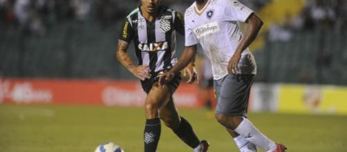 Figueirense X Botafogo: transmissão ao vivo na TV e online