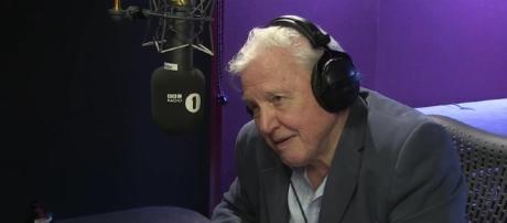 Sir David Attenborough doing voice-over work an Adele song. YouTube (Screencap-BBC Radio 1)