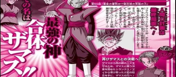 El nombre oficial de la fusion de Zamasu y Black es: Zamasu