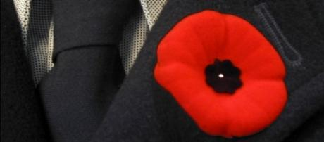 Poppies and the Remembrance Day (Image source : Wikipedia)