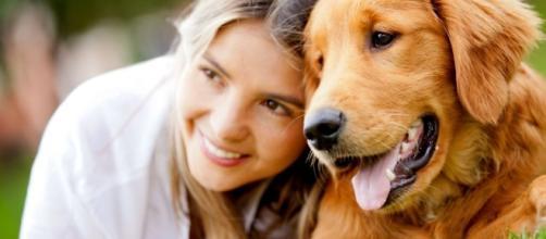 Passear com o seu cão faz bem para a saúde dele e à sua