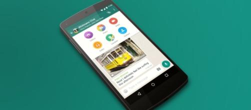 WhatsApp GIF support is finally on its way - thenextweb.com
