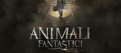 Animali Fantastici e dove trovarli, presto al cinema