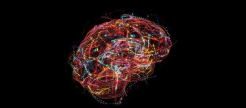 Can Quantum Physics Explain Consciousness? - The Atlantic - theatlantic.com
