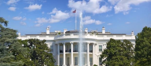 Can Trump really win it?   Washington Examiner - washingtonexaminer.com