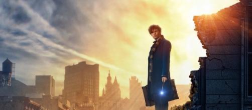 Animali fantastici e dove trovarli dal libro di J.K.Rowling: uscita, trama, cast, trailer, curiosità