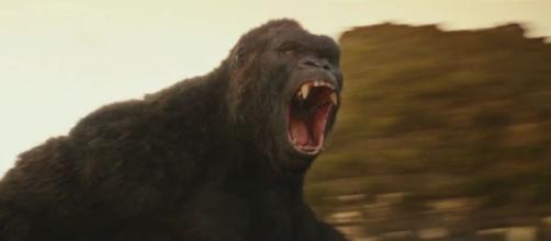 Kong: Skull Island Final Official Trailer - Computer Graphics ... - cgmeetup.net