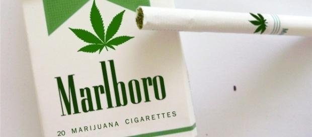 L'Italia apre al Monopolio di Stato sulla cannabis? (fotomontaggio)