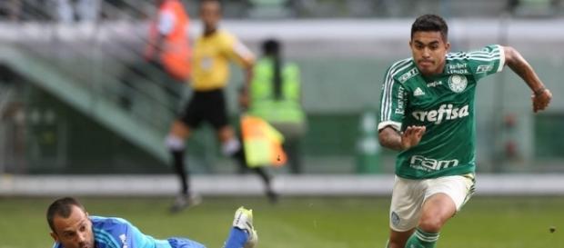 Palmeiras x Botafogo: assista ao jogo ao vivo
