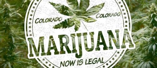 A Denver in Colorado sarà possibile fumare marijuana nei locali pubblici