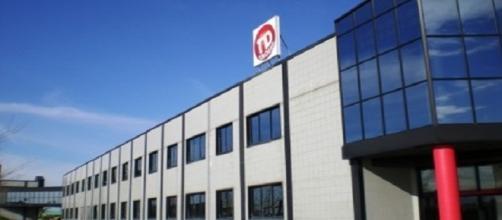 L'azienda TD Group di Migliarino (Pisa)