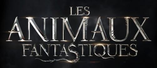 Les Animaux Fantastiques: des sorciers feront leur appartition - geeksandcom.com